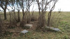 Fallen monuments in almost forgotten cemetery